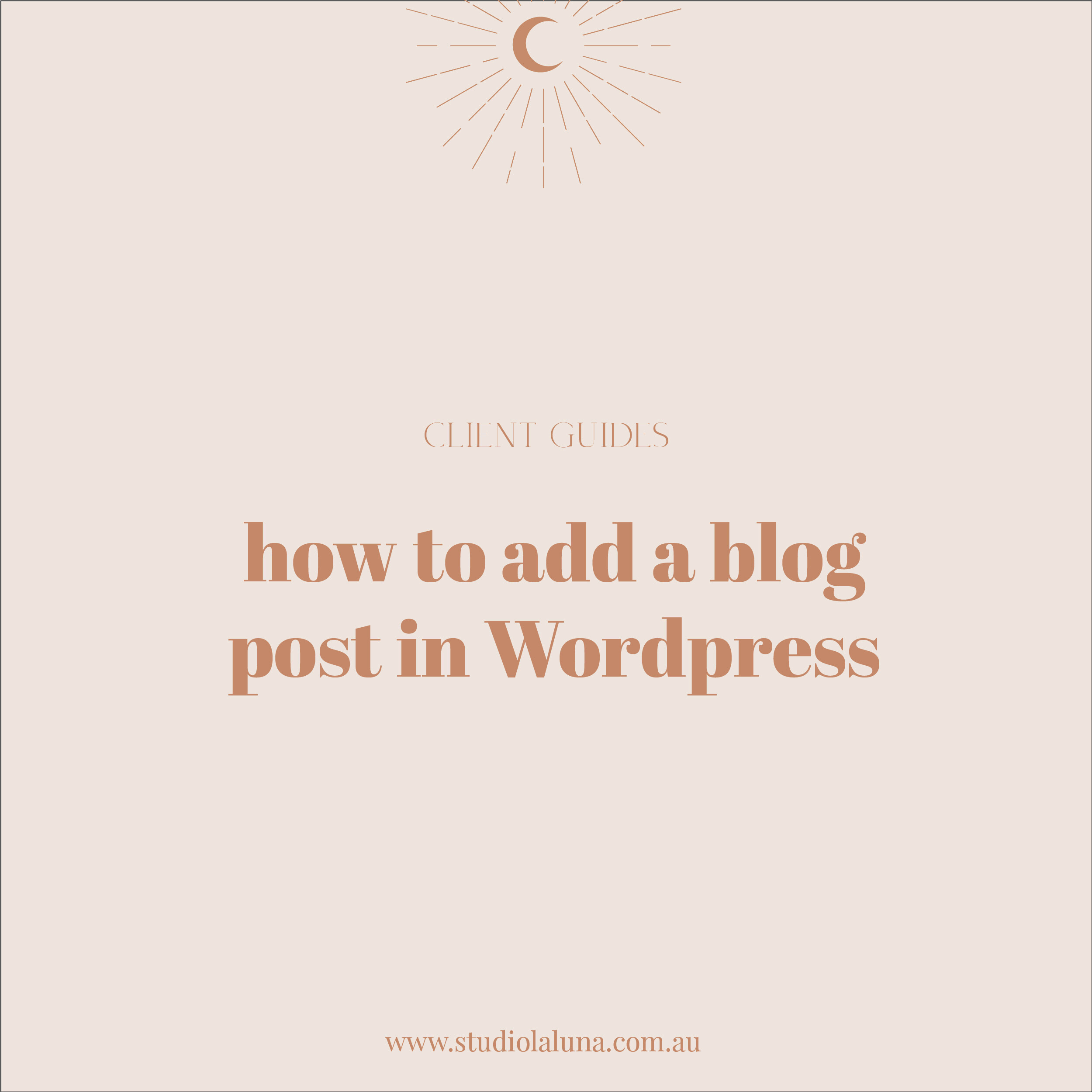 How to add a blog post to your WordPress website